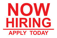 NOW HIRING full time/part time, Permanent and temporary