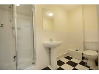 **8 Bedroom Town House - Queens Road - Only 2 rooms left!**