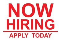 Looking for car detailer/Lot Attendant