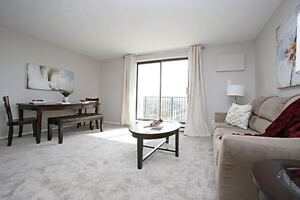 Downtown -NEWLY RENOVATED! Modern Amenities!!