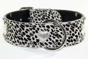 STUDDED & DECORATIVE LEATHER COLLARS