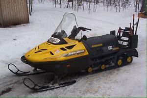 Looking for cheap snowmobile