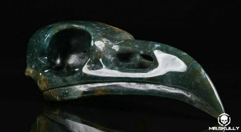 """Huge 5.0"""" Green Moss Agate Carved Crystal Raven Skull, Realistic,Crystal Healing"""