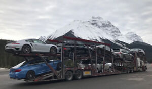 Car Shipping / Transport