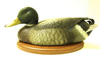 Decorative carved duck decoy…Mallard male