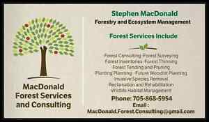 Portable Sawmilling services right to your door! Kawartha Lakes Peterborough Area image 3