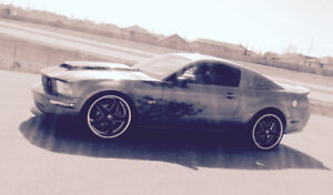 2007 Supercharged Mustang GT