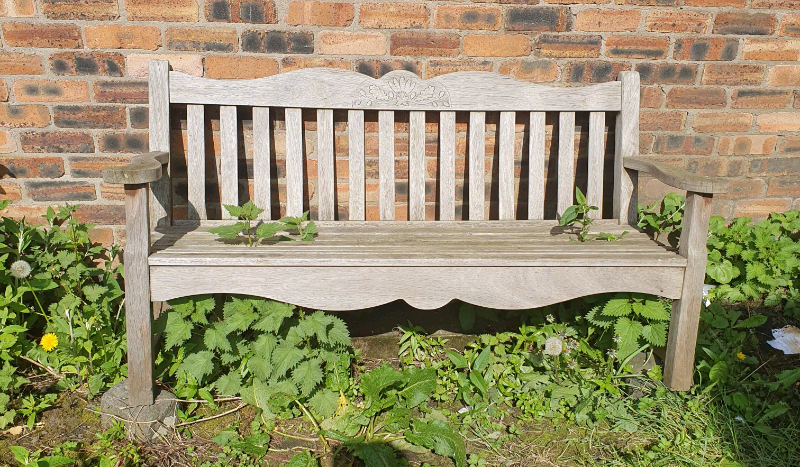 Garden Bench 5ft In Haymarket Edinburgh Gumtree