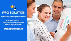 PROFESSIONAL WEBSITE DESIGN AND DEVELOPMENT SERVICES