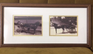 Vintage Photos of Saint John, NB -Horse and Carriage