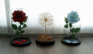 Enchanted Rose - Gifts, Centerpieces, & Decorations