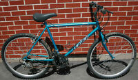 Leader 18 Speed Mountain Bike