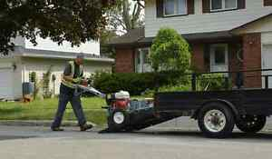 TREE STUMP REMOVAL/GRINDING >book now and save $$$$$ Kitchener / Waterloo Kitchener Area image 5