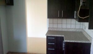 Grand 9-1/2, 4 chambres a coucher 1300$ Laval,