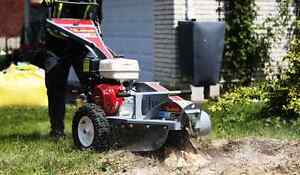 TREE STUMP REMOVAL/GRINDING >book now and save $$$$$ Kitchener / Waterloo Kitchener Area image 1