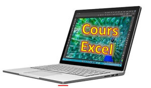 Excel: Learn How To Be Efficient/Formations avec exercices (130$