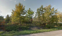 Two Adjacen 10 Acre Lots near Cobden Ontario