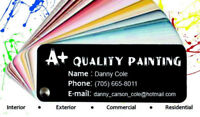 Top quality painter (New to Ottawa)
