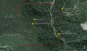 Placer Gold Claim -  Naver Creek, near Barkerville, BC - B38