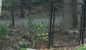 Chain link fence with posts and gate - 50 feet