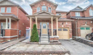 New Renovated 1 Bedroom basement in Ajax $1,150