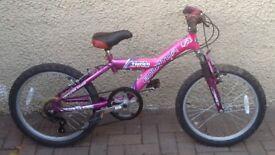 "Bike/Bicycle. GIRLS EQUATOR "" TAMER "" MOUNTAIN BIKE. SUIT 6-9 YEARS"
