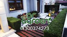Affordable Landscaping Services Botany Botany Bay Area Preview