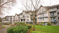 The Shelbourne,  1 bed, 1 bath in Hillside
