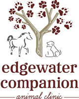 Dr. Chris Martens - Edgewater Companion Animal Clinic