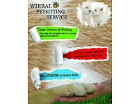 Wirral Dog Walking Service