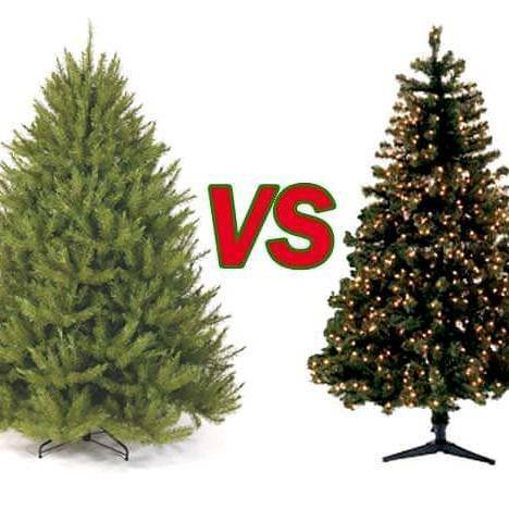 Real Christmas Trees Belfast area delivery and installation ...