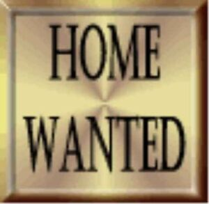 House Wanted ASAP, ANY CONDITION $$$$