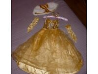 Bella princess dress 5-6 yo