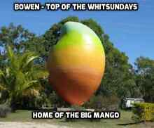 Mango Orchard with 2 Bedroom accommodation and large shed Bowen Whitsundays Area Preview
