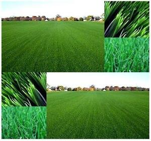 Image Result For Image Result For Tall Fescue Sod