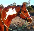 Western Horse Bridles & Headstalls