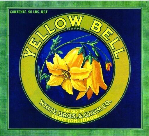 Lewiston Idaho Yellow Bell Flowers Apple Fruit Crate Label Art Print