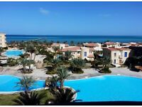 Stunning Fully Furnished Apartment in Hurghada For Sale - Private Beach & Panoramic Sea Views!