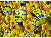 Street fundraising for Marie Curie Cancer Care - Join the innovative Mobile Giving Team! £9.50p/h + City of London