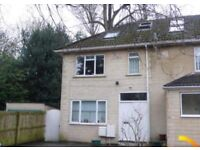 Housemate Needed Asap! Double bedroom, close to town centre. Student house. Available immediately
