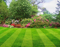 Grass cutting spring cleanup, property maintenance