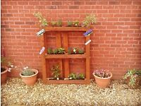 Two Pallets gardening ideas