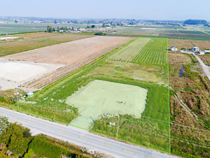 For Sale Blueberry Farm – 9.42 Acres, 16975 40 Avenue