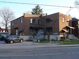 Rare Residential Multiplex Rental Property at Yonge/Lawrence For