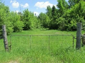 Looking For Farm/Vacant Land