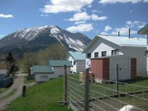 3 BDRM 1/2 DUPLEX  FOR RENT IN CROWSNEST PASS,AB. $900.