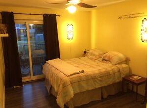 bedroom for rent in cozy south edmonton condo