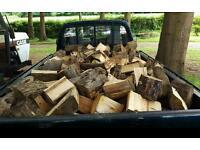 Seasoned hard dry fire wood