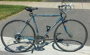 """Road bike for sale 21""""frm, 12.spd, 27tires free spirit blue"""