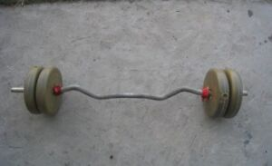 Curl Bar with 40 Lb plastic Weights  in good condition